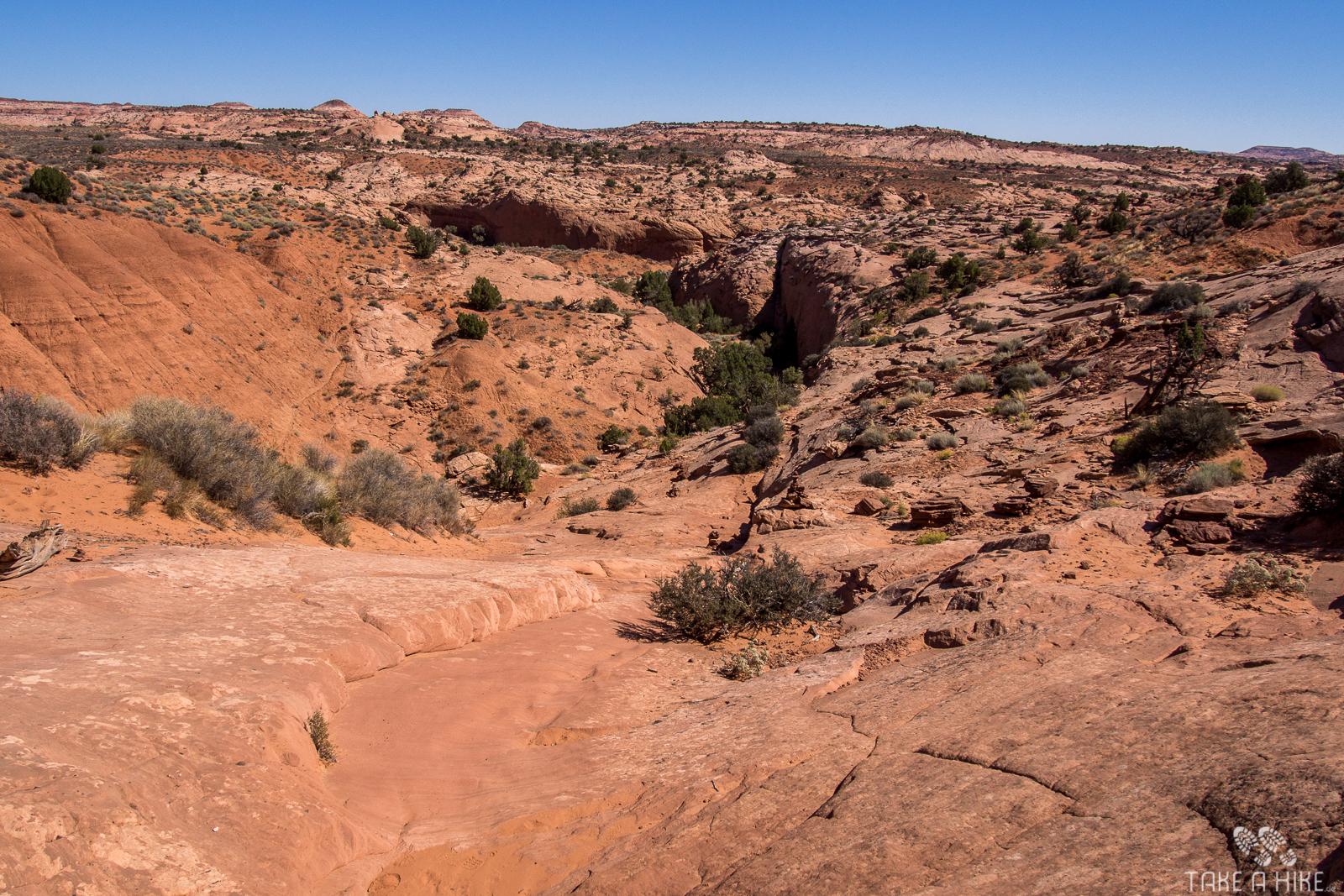 Dry Fork Canyon - der Blick von oben