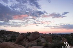 Sonnenaufgang Sunrise Joshua Tree Campground