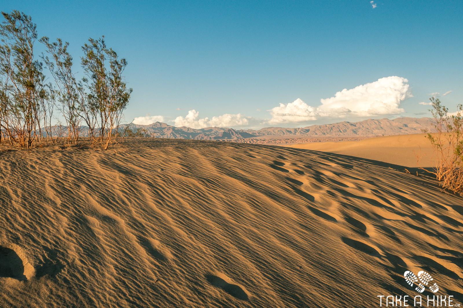 Mesquite Sand Dunes - Death Valley