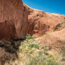 Willow Gulch