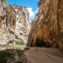 Cottonwood Canyon Road - Narrows