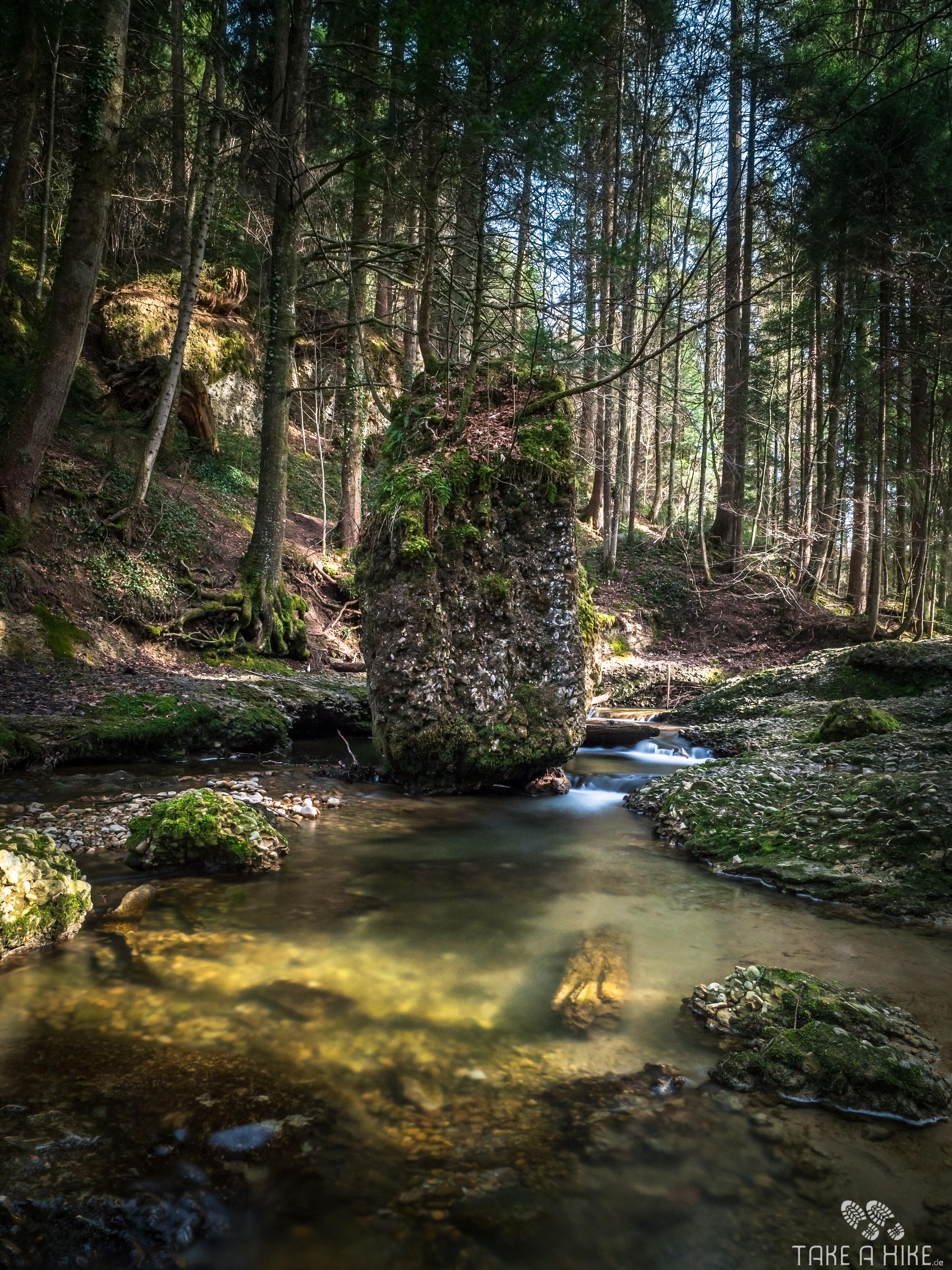 Fotoparade 01/2018: Scheidegger Wasserfälle im Allgäu